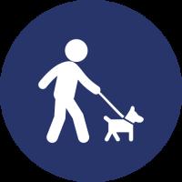 zona-sgambamento-cani_tavola-disegno-1-500x500